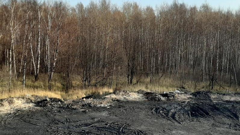 Минэкологии просит изъять захламленные сельхозземли у недобросовестного собственника в Мытищах