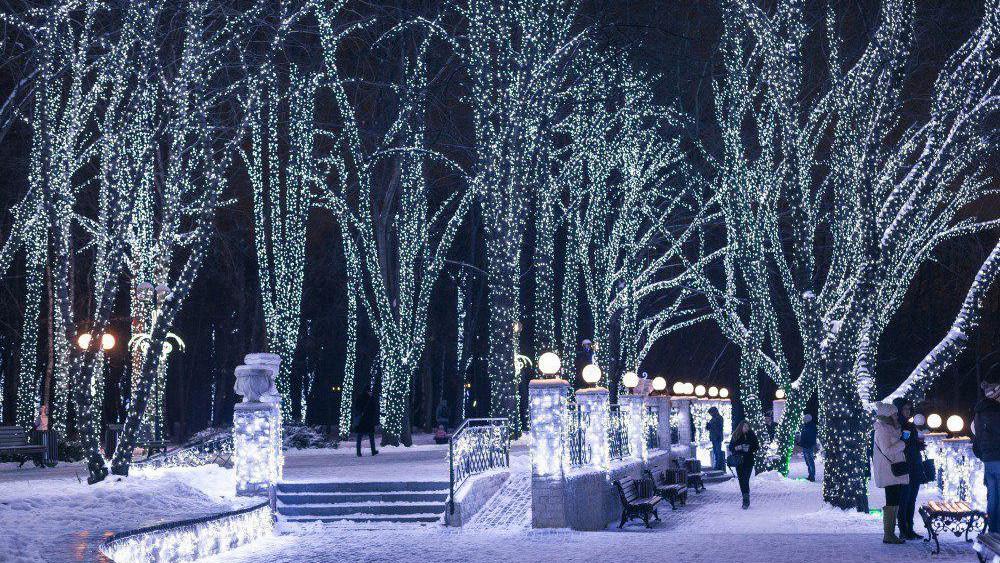 Иллюминация в зимнем парке