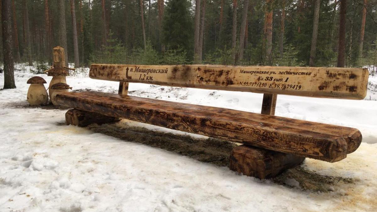 Почти 580 скамеек-навигаторов появилось в лесах Подмосковья