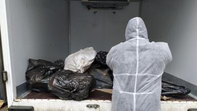 Порядка 7,8 тыс. электронных документов оформили на уничтожение 6,6 тыс. тонн биотходов