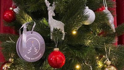 Роман Терюшков помог осуществить новогоднее желание девочки из Котельников