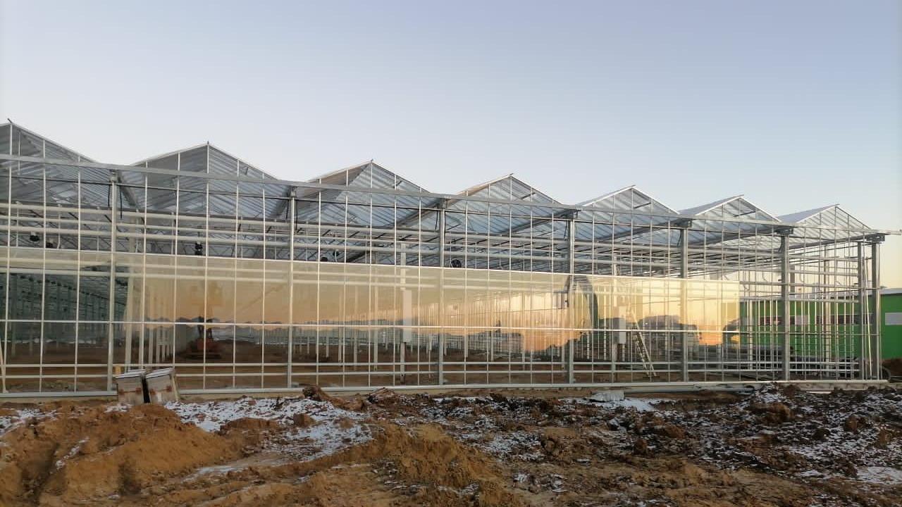 Строительство пятой очереди тепличного комплекса в Кашире завершат в I квартале 02021 года