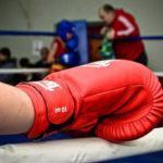 В Наро-Фоминске завершился боксёрский турнир