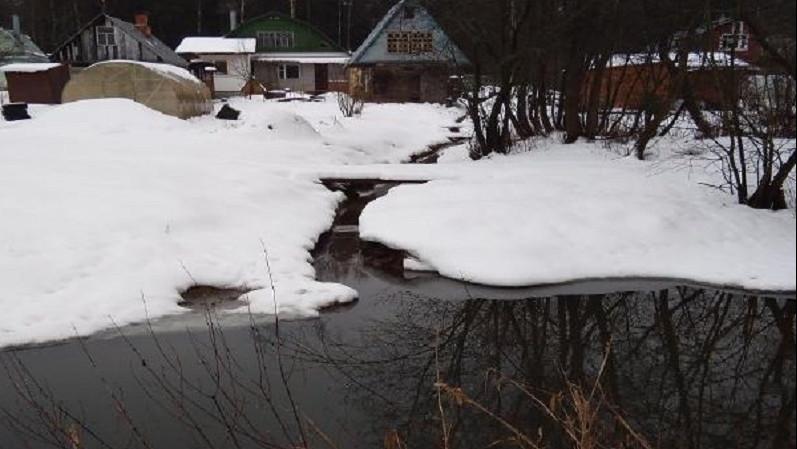 Минэкологии проверит информацию о загрязнении реки в Пушкинском городском округе
