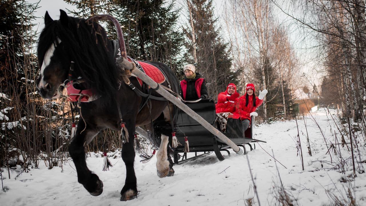 Жители и гости Московской области смогут на праздниках посетить выставки и покататься на лыжах