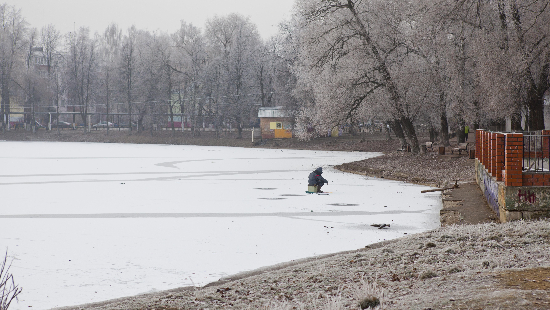Жители региона могут выбрать водоемы для расчистки на портале «Добродел»