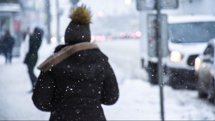Минтранс Подмосковья предупреждает водителей о мокром снеге и гололедице