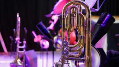 Почти 900 музыкальных инструментов приобретут для подмосковных школ искусств в 2021 году