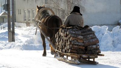 В 2 раза снизился объем заготовки населением древесины на дрова в Подмосковье в 2020 году
