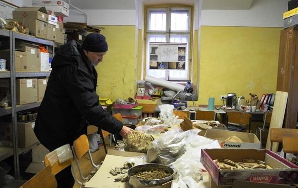 В Черновицкой области обнаружили зуб мамонта