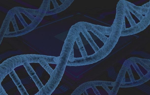 В геноме человека обнаружили новые гены, связанные с раком