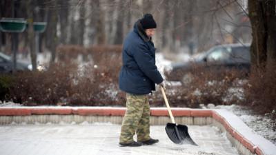 Волонтеры помогают инвалидам и пенсионерам с уборкой снега во дворах Московской области