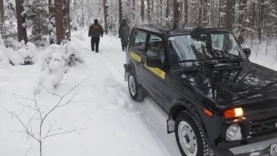 Более 130 лиц привлекли к ответственности за нарушение лесного законодательства в Подмосковье