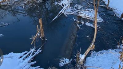 Еще одного загрязнителя реки Злодейки выявили в Домодедове