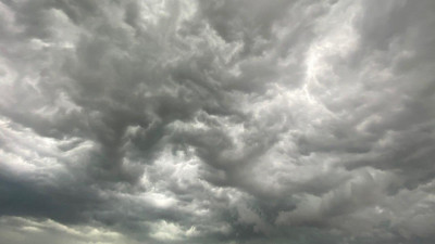 Качество атмосферного воздуха проверили в 8 муниципалитетах Подмосковья за неделю