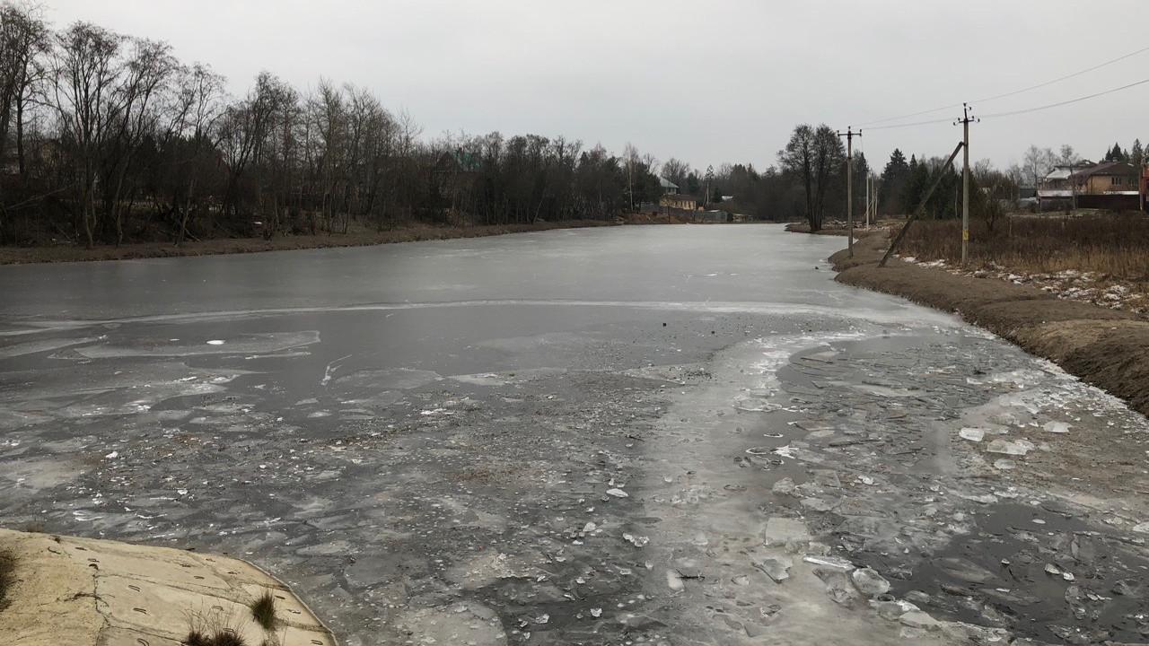 Компания из Одинцовского округа должна компенсировать нанесенный экологии ущерб