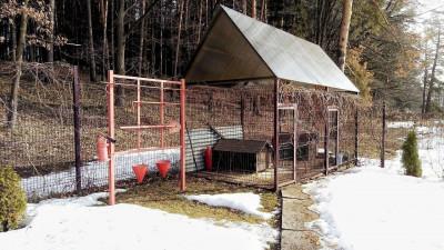Мероприятие «Арендатор» по контролю за соблюдением требований в лесах стартует в Подмосковье