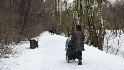 Министр благоустройства рассказал о работе в рамках благоустройства Мытищинского лесопарка
