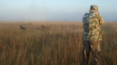 Новые правила охоты начали действовать в Подмосковье с начала года