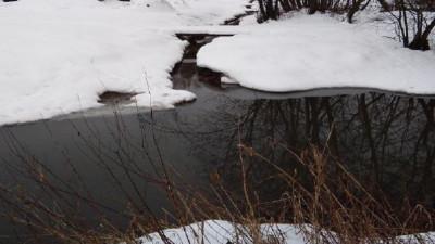 Расследование загрязнения берегов реки в Ленинском округе начали на федеральном уровне