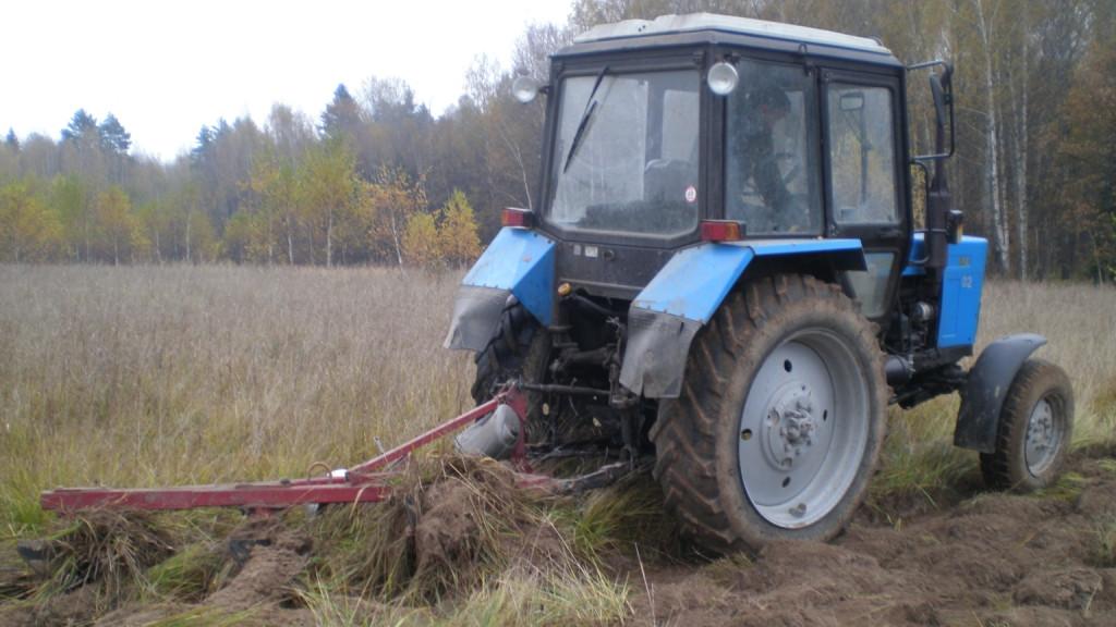 Сев кормовых культур увеличат на 27 тыс. га в Подмосковье в 2021 году