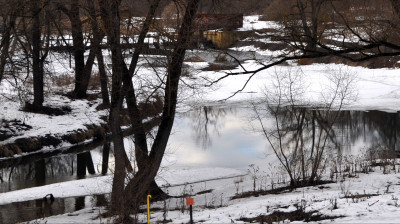 Солнечногорскую компанию оштрафуют за самозахват и загрязнение водного объекта
