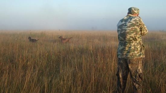 Сроки подачи заявлений на разрешение добычи охотничьих ресурсов изменили в Подмосковье