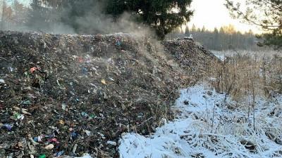 Четкий алгоритм перевозки и размещения строительного мусора разработали в Московской области