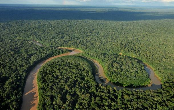 Экологи бьют тревогу: только треть тропических лесов во всем мире нетронута