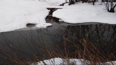 Минэкологии оштрафовало ритейлера за загрязнение реки в городском округе Домодедово