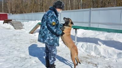 Роман Каратаев поздравил работников уголовно-исполнительной системы с праздником