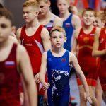 Роман Терюшков: «Турнир по греко-римской борьбе в Раменском – это хорошая спортивная традиция округа»