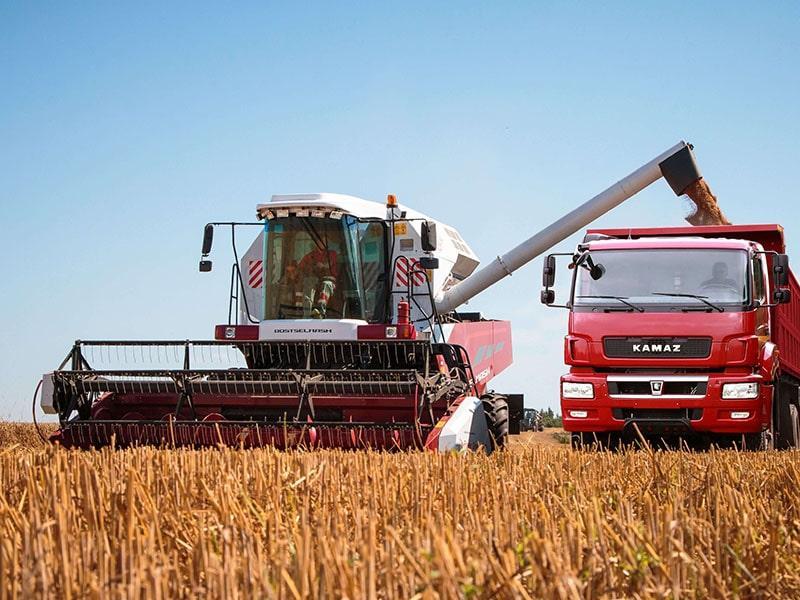 россия впервые стала нетто экспортёром сельхозпродукции