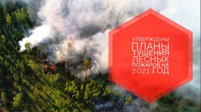 Сводный план тушения лесных пожаров на текущий год утвержден в Подмосковье