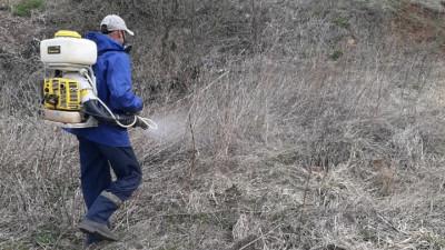 Обработка земель от борщевика