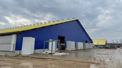 Комплекс молочного животноводства построят Волоколамске