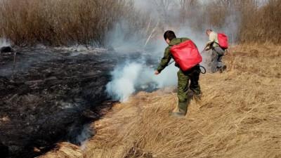 Лесная охрана и лесные пожарные пять часов тушили огонь в Талдомском округе