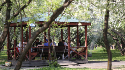 Майские праздники в Московской области могут пройти без ограничений по Covid-19