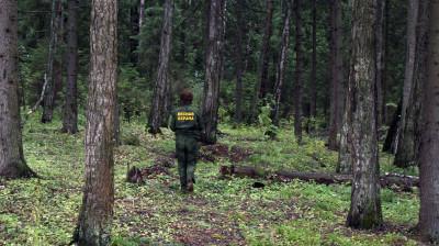 Мероприятие по контролю за соблюдением обязательных требований стартовало в лесах Подмосковья