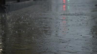 Минтранс Подмосковья предупреждает о сильных осадках и ветре в регионе