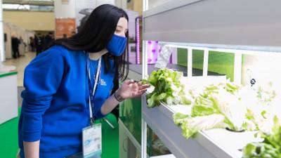 Почти 300 студентов Тимирязевского университета пройдут практику в сельхозпредприятиях