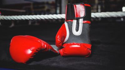 Подмосковные спортсменки завоевали 37 медалей на соревнованиях по боксу