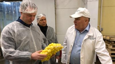 Порядка 7,8 тыс. га засеют овощными культурами открытого грунта в Подмосковье в 2021 году