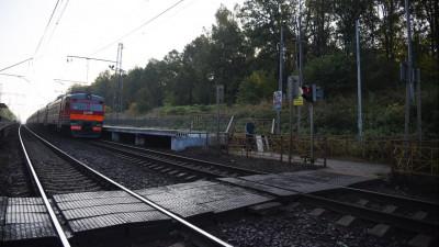 Порядка 80 «народных троп» вдоль железных дорог ликвидировали в Подмосковье с начала года