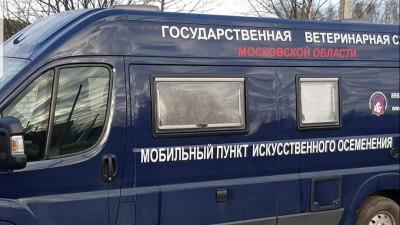 Шесть пунктов искусственного осеменения КРС создали в Подмосковье