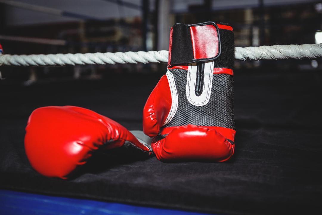 Спортсменки из Московской области завоевали 37 медалей на боксёрских соревнованиях
