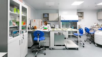 Три научных центра из Подмосковья получат гранты Российского фонда науки