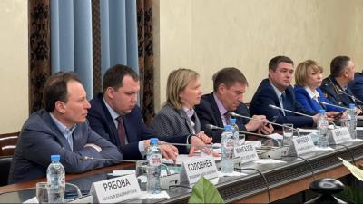 Владимир Головнев поучаствовал в круглом столе в Общественной палате РФ