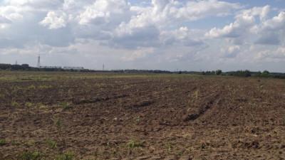 Внести изменения в перечень особо ценных сельхозугодий Подмосковья теперь можно онлайн