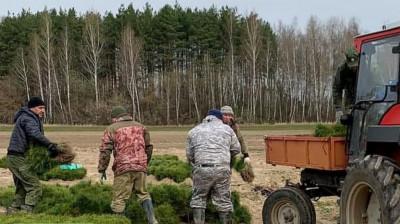 Выкопка сеянцев для посадки леса началась в питомниках Подмосковья